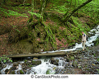 A girl with a backpack on a tourist trail in the forest near the stream.