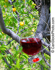 red wine and fruit tree