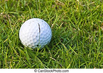 A golf ball on a fairway