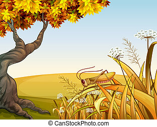 Illustration of a grasshopper in the grass