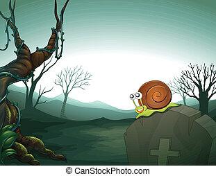 A graveyard with a snail