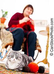 A gray cat lies on the carpet next to woolen threads