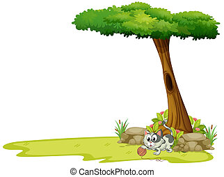 A gray cat playing with a string ball under a tree