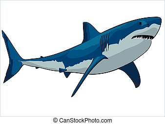 shark - A great white shark with open mouth