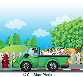 A green car along the street with dogs at the back