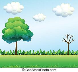 A green field scenery