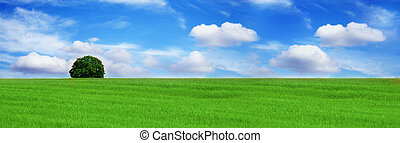 a green field with a lonely tree under the beautiful, blue sky with clouds