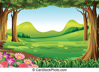 A green forest - Illustration of a green forest