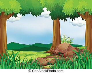 A green forest with rocks