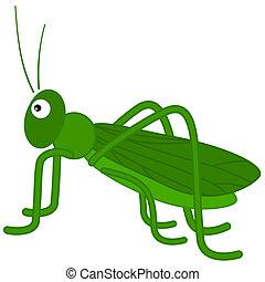 a green grasshopper