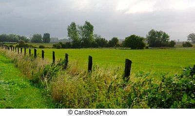 a green pasture on the island of Poel in northern Germany