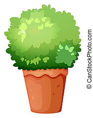 A green potted plant - Illustration of a green potted plant ...