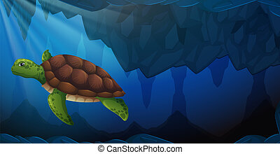 A green sea turtle underwater