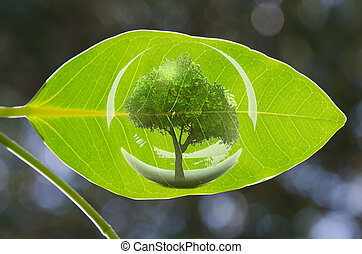 a green tree in a green leaf