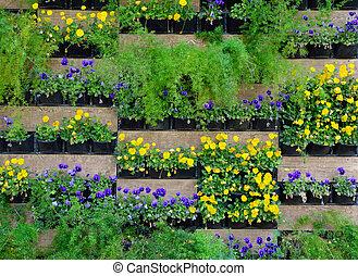 A green wall, also known as a living wall or vertical garden