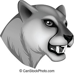 A grey panther - Illustration of a grey panther on a white...