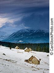 a, groß, dorf, in, der, carpathian, berge, schneebedeckt, berge, trüber himmel