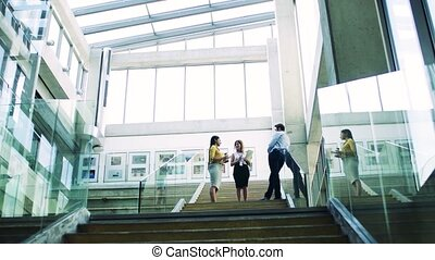 A group of businesspeople standing on the stairs in the...