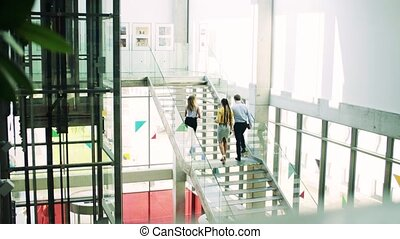 A group of businesspeople walking up the stairs in the...