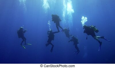 A group of diver doing safety stop near sea surface. Red sea...