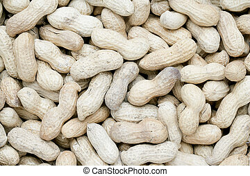 a group of groundnuts
