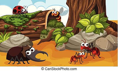 A Group of Happy Insect in Forest