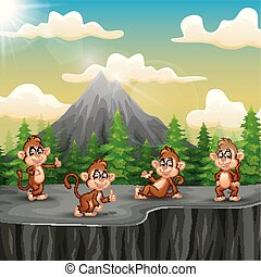A group of monkey sitting on the cliff