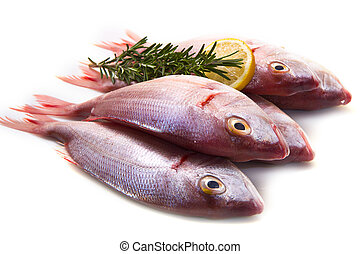 sea bream - a group of sea bream with lemon and rosemary on ...