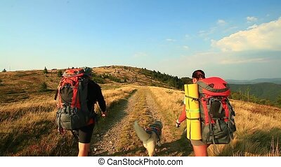 a group of tourists go on foot with backpacks along the trail with dog