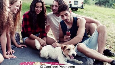 A group of young friends with a dog sitting on grass on a...