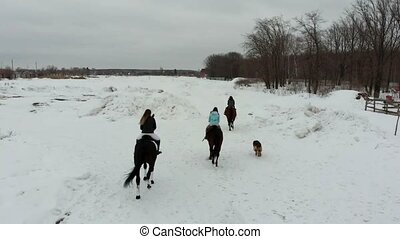 A group of young women riding horses on a snowy field. Back...