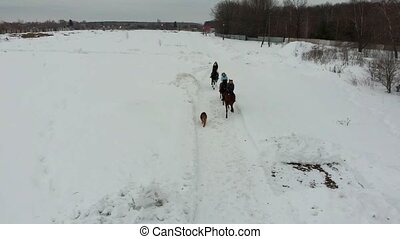 A group of young women riding horses on a snowy field. Going...
