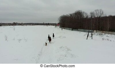 A group of young women riding horses on a snowy field. Wide...