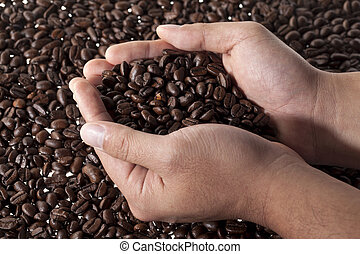 a hand holding a scoop of coffee grains