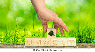 hand puts the word environment together with wooden cubes