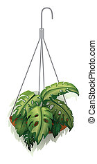 A hanging plant - Illustration of a hanging plant on a white...