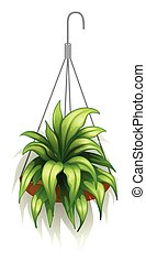A hanging pot with green plants