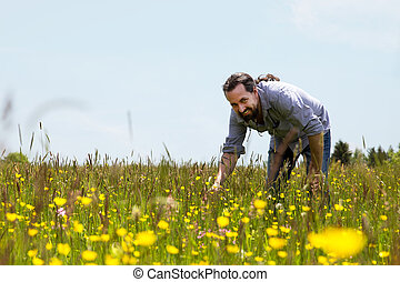 happy bearded man on a wonderfull flower meadow