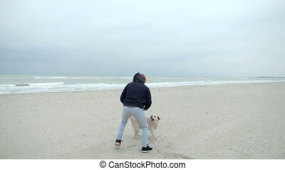 A happy family is playing with a dog on the beach, teasing her with a stick.