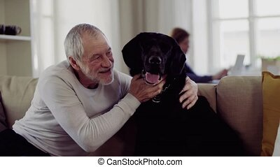A happy senior couple indoors with a pet dog at home. - A...