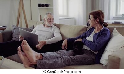 A happy senior couple sitting on a sofa indoors with a pet dog at home, using laptop.