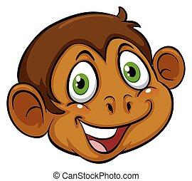 A head of a monkey