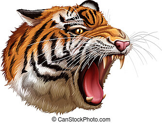 A head of a roaring tiger