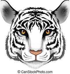 A head of a tiger