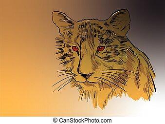 a head of tiger