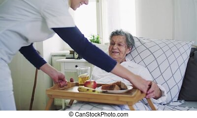 A health visitor bringing breakfast to a sick senior woman...