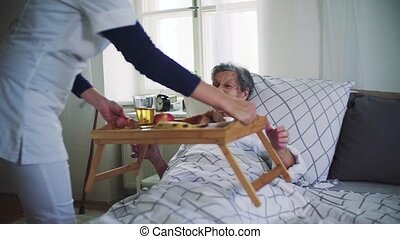 A health visitor bringing breakfast to a sick senior woman in bed at home.