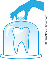 A healthy tooth is protected by a glass dome. Dentistry.