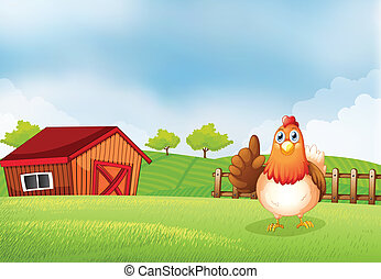 A hen at the farm