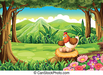 A hen hatching eggs above the stump at the forest - ...